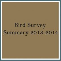 Bird Survey 2013 2014