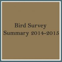 Bird Survey 2014 2015